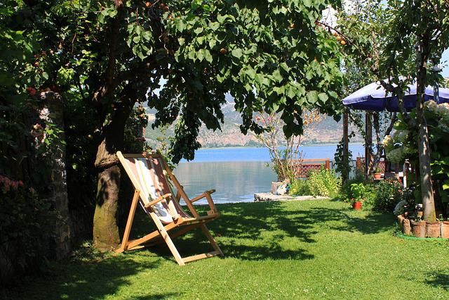 Tree, Garden, Summer, Bench, Nature, Relaxation, Chair