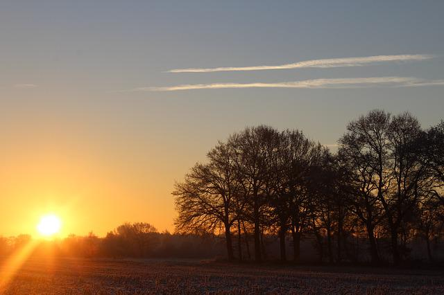 Sunrise, Winter, Sun, Tree, Landscape, Morgenstimmung
