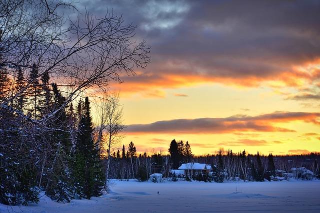 Winter Landscape, Nature, Winter, Tree, Sunset, Evening