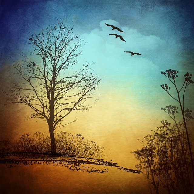 Tree, Bird, Nature, Branch, Branches, Blue, Trees