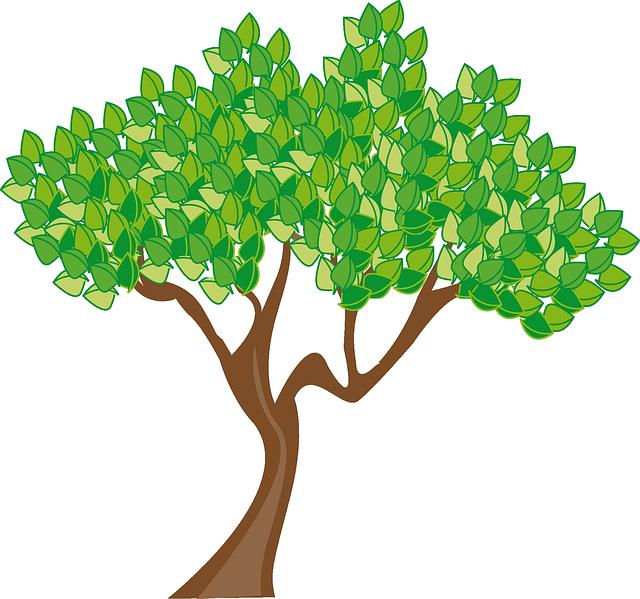 Season, Summer, Tree, Leaves, Green, Trunk, Woods