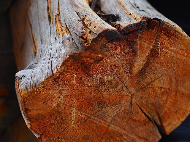 Wood, Tree, Cut, Finland, Old, Rustic, Nature, Timber