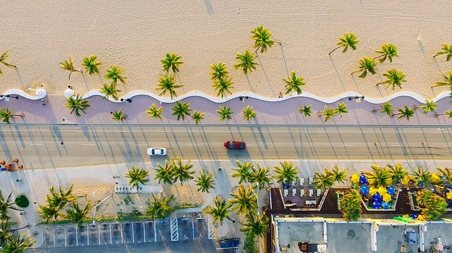 Buildings, Cars, Palm Trees, Road, Sand, Trees