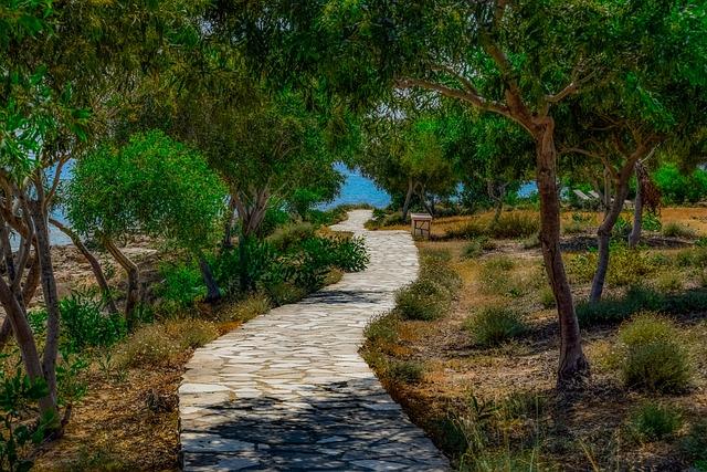 Path, Coastal, Trees, Landscape, Wood, Makronissos