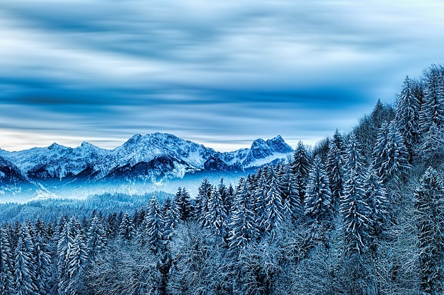 Winter, Forest, Mountain, Snow, Nature, Alpine, Trees