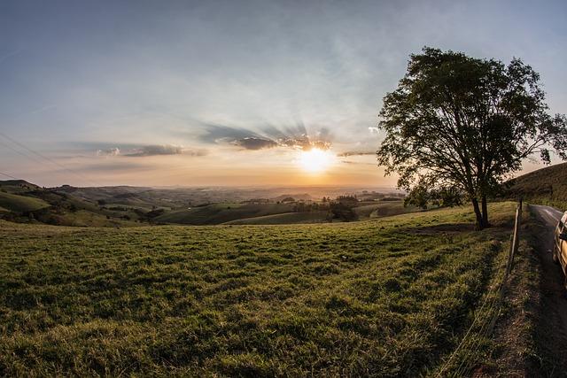 Nature, Landscape, Plains, Grass, Trees, Sky, Clouds