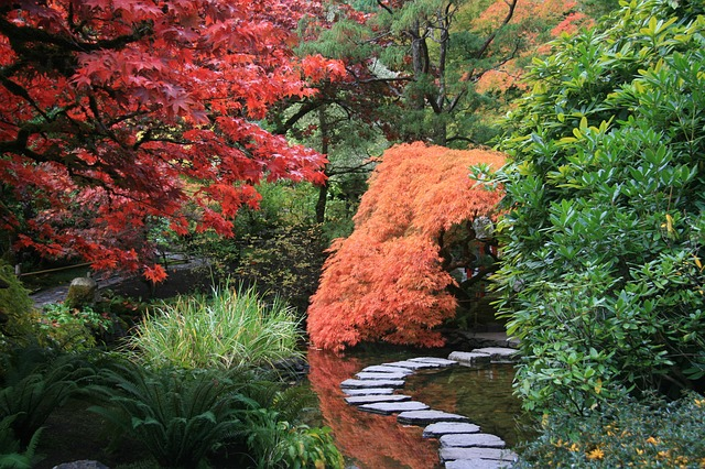 Japanese Garden, Path, Trees, Nature, Green Nature