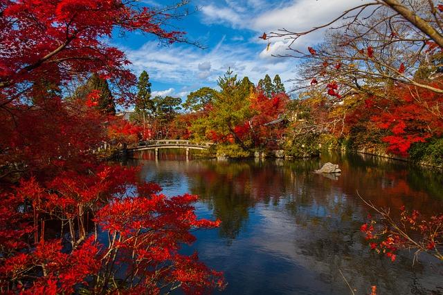 Japanese, Asia, Foliage, Ancient, Nature, Trees, Zen