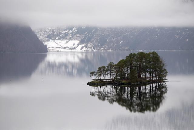 Fog, Lake, Landscape, Nature, Reflection, Snow, Trees