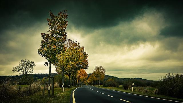 Autumn, Road, Trees, Leaves, Asphalt, Avenue