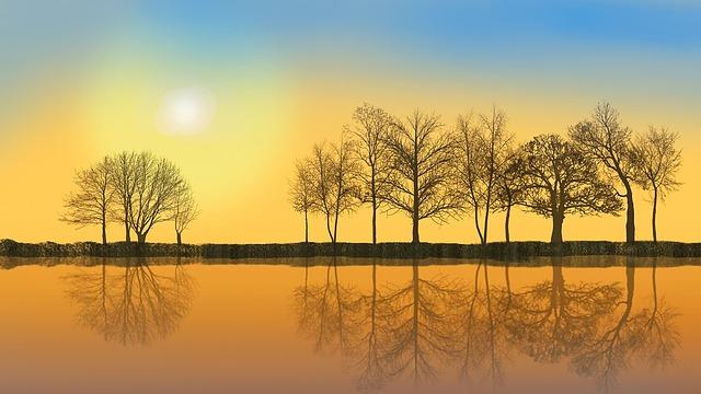 November, Mood, Nature, November Mood, Trees