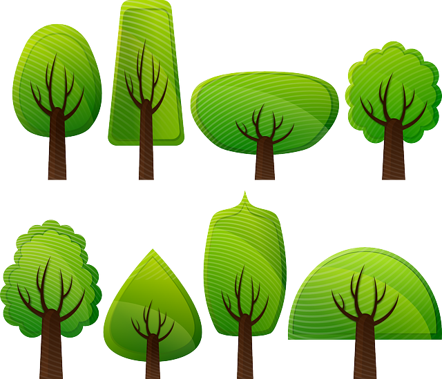 Trees, Woods, Forest, Deciduous Trees, Shrub, Plant