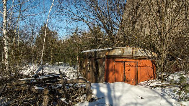 Train, Wagon, Snow, Trees, Exclusion Zone, Winter