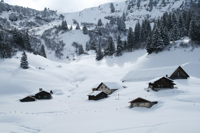 French-speaking Switzerland, Snow, Trees, Wintry, Cold