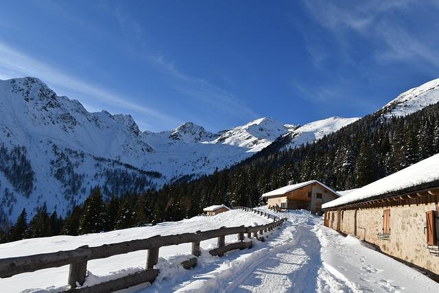Snow, Mountain, Winter, Cold, Wood, Alm, Trentino