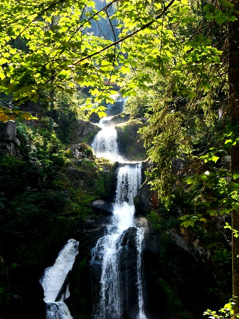 Waterfall, Trier, The Highest Waterfall Of Germany