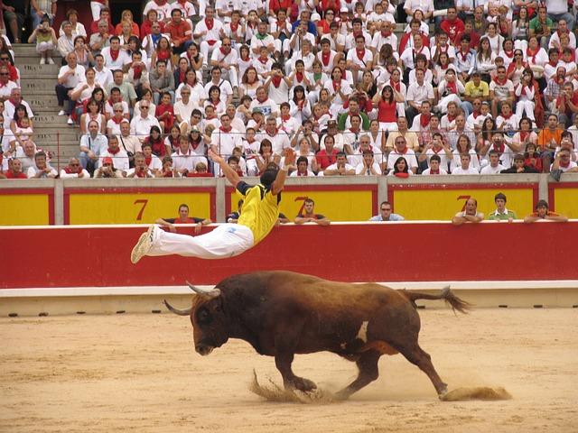 Toro, Trimmers, Bullring