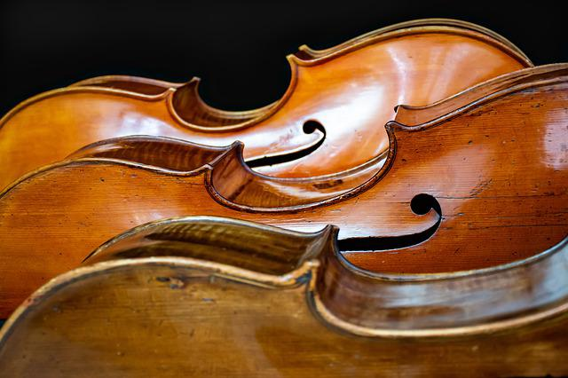 Cello, Trio, The Meaning Of Life, Instruments