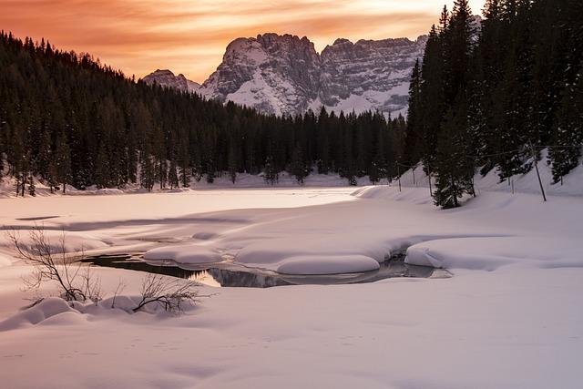 Trip, Snow, Tree, Nature, Winter, Water, Lake, Sunset