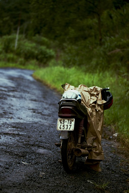 Motor, Trip, Young, Vietnam, Traveling