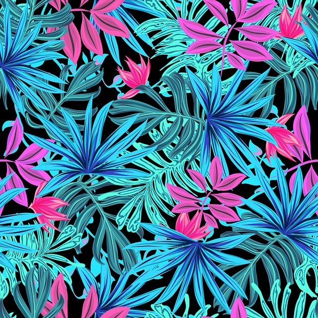 Leaves, Picture, Tropical, Plant, Illustration