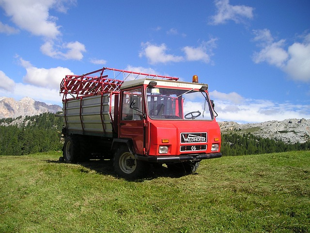 Truck, Agriculture, Hay Wagon, Dolomites, Mountains