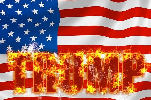 Trump, Usa, President, Politics, Republican, Government