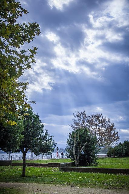 Lake, Trees, Sky, Trunk, Tree, Water, Clouds, Green