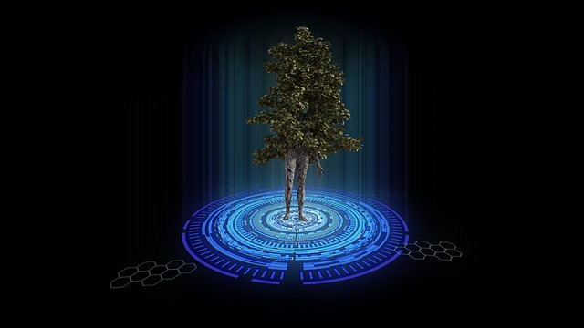 Teleportation, Tree, Nature, Trunk, Tree Leaf, Branches