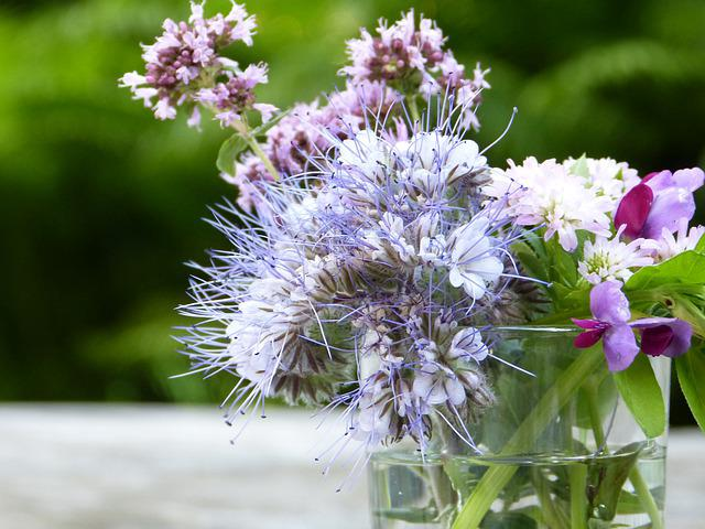 Bees, Bee Friend, Phacelia, Tufted Flower, Glass, Water