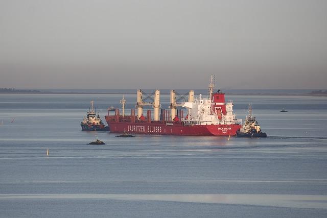 Odense Fjord, Ship, Bulk Carrier, Tug, Maritim