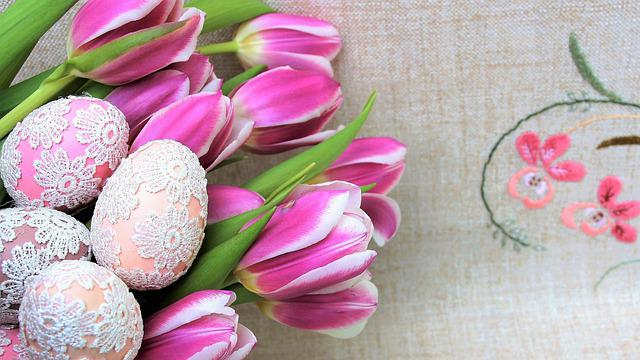 Easter, Eggs, Flower, Color, Nature, Floral, Tulip
