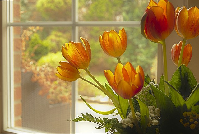 Tulips, Tulip Bouquet, Bouquet, Window, Flowers, Bloom