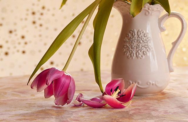 Still Life, Vase, Flowers, Tulips, Tulipa, Death, Faded