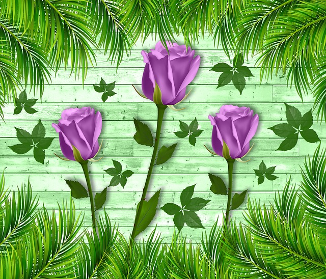 Design, Background, Wood, Tulip, Tulips, Flower