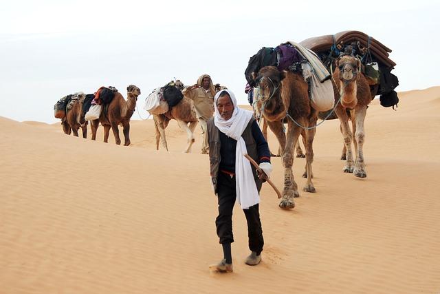 Tunisia, Bedouin, Desert, Caravan