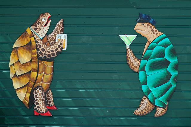Wall Mural, Graphic Art, Turtle, Reptile, Colorful