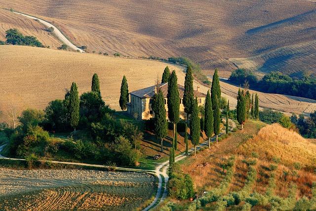 Tuscany, Landscape, Cypress
