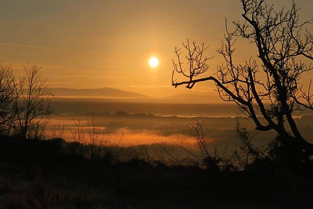 Dawn, Landscape, Tuscany, Sunser, Evening, Tree