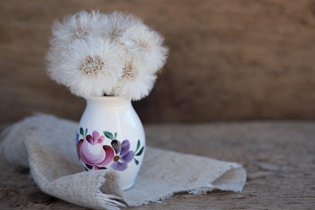 Tussilago Farfara, Dandelion, Seeds, White, Close, Vase
