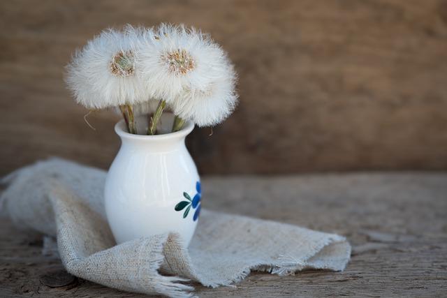 Dandelion, Tussilago Farfara, Seeds, White, Vase, Deco