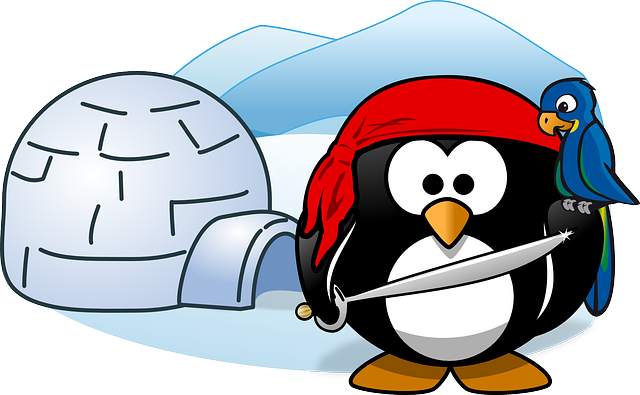 Pirate, Tux, Animal, Bird, Cold, Ice, Igloo, Parrot