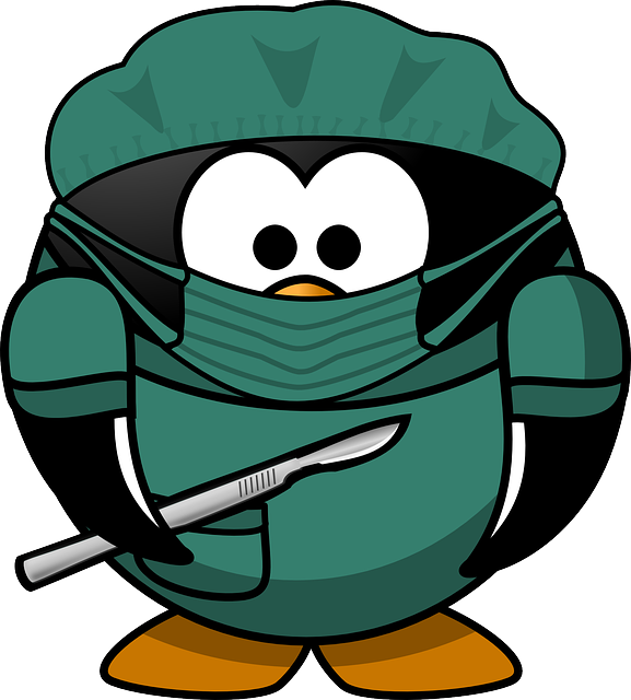 Doctor, Tux, Animal, Bird, Bonnet, Hospital, Mask