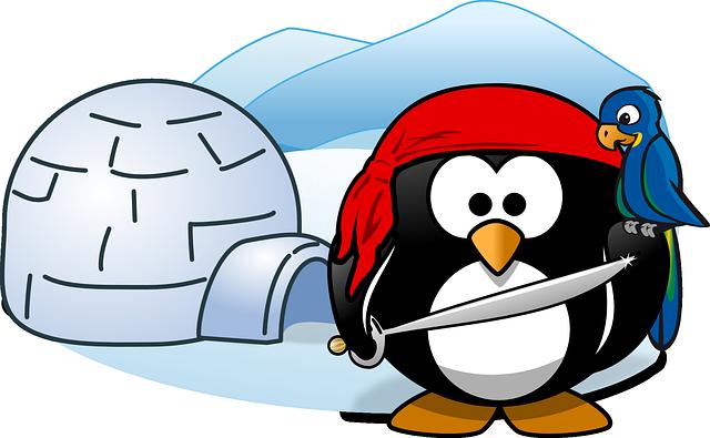 Pirate, Tux, Animal, Bird, Cold, Ice, Igloo, Parrot