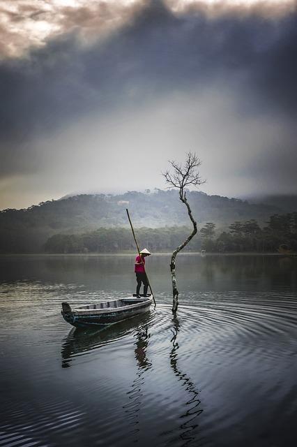 Tree, Fisherman, Fishing, Lake, Tuyen Lam, Da Lat