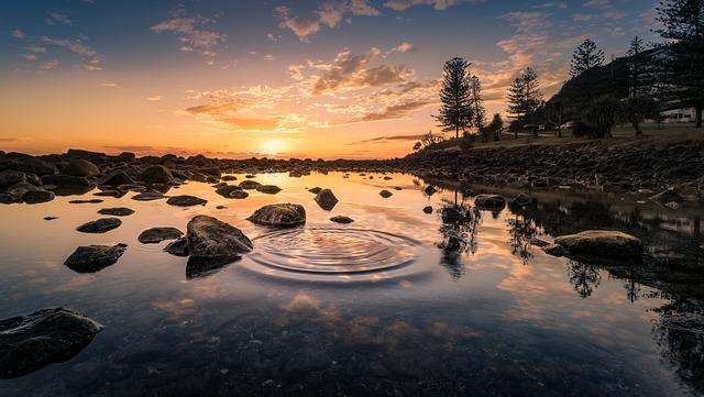 Lake, Sunset, Rocks, Bank, Conifers, Dusk, Twilight
