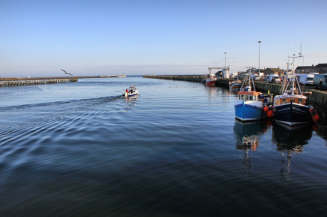 Amble, Northumberland, Harbour, Boats, Fishing, Uk