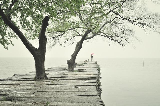 Pier, Rain, Person, Umbrella, Water, Ancient, Suzhou