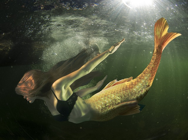 Mermaid, Fantasy, Siren, Underwater, Sea, Woman, Girl