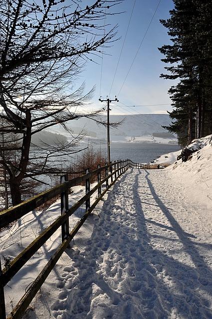 Forest Path, Near Dovestones Reservoir, United Kingdom